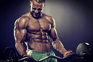 bodybuilder-2-medium