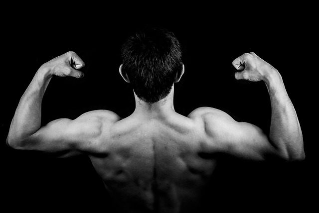 Flex Your Muscles After Bicep Implants (Image courtesy bycfotografem on Pixabay via CC0 Public Domain license)