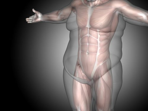 What You Need To Know About Male Liposcution in NYC